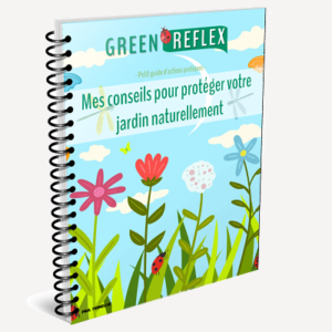 guide gratuit greenreflex